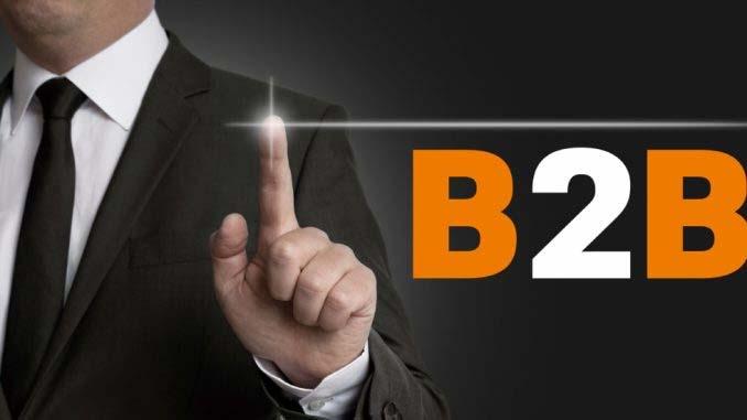 Infographie L'e-commerce B to B à la loupe